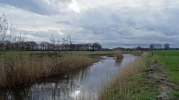 Een druilerig Stiphout. (Foto: Willem van Nunen)