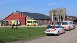 Man maakt val in boerderij Het Hakkevelt (foto: Jurgen Versteeg/FPMB).