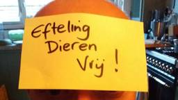De Vegan Strike Group vroeg mensen een foto te maken met een papiertje met daarop de tekst 'Efteling Dieren Vrij'.