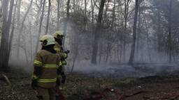 Brand in de bossen van Sambeek. (Foto: SK Media)