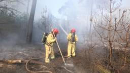 Brandweerlieden bestrijden het vuur. (Foto: SQ Vision)