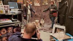 Professionele fotoshoot voor huisdieren bij Intratuin in Breda (Foto: Collin Beijk)