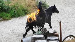 De actievoerders verzetten zich tegen brandende dekens op de paarden van Raveleijn (foto: Erald van der Aa).