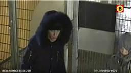 Twee van de vier inbrekers (foto: Bureau Brabant)