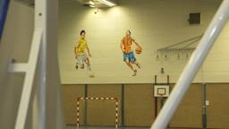 Sporthal de Eckhart wordt gesloopt.