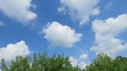Zo zag het er vanochtend uit In Oirschot. Dit beeld zal ook op Moederdag te zien zijn. (Foto: Peter van der Schoot)