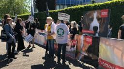 Activisten protesteren in Den Bosch tegen dierproeven. (Foto: Rogier van Son).
