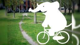 De gemeente vraagt inwoners om 'Olifantenpaadjes' te melden. (Beeld: Gemeente Breda.)