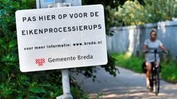 Ook in Breda hadden ze last van de rups (Foto: Erald van der Aa).