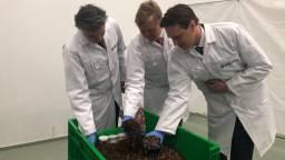 Koning Willem-Alexander bekijkt de larven van Protix (Foto: Erik Peeters)