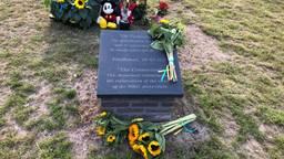 Zonnebloemen bij het MH17 monument