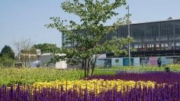Tilburg trekt vier ton uit voor herstel groen in de stad. (Foto: gemeente Tilburg)