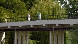 Er mag absoluut geen vrachtverkeer over de brug rijden, voetgangers zijn nog wel toegestaan. (Foto: Omroep Brabant)
