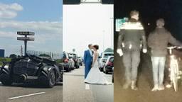 Gekke gevallen op de snelweg. (Foto's: Kees-Jan van Rijkswaterstaat, Gaby Ermstrang, Emile Theunissen)