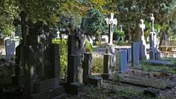De man wordt verdacht van tien zaken van diefstallen en vernielingen op begraafplaatsen in de regio (Archieffoto: Karin Kamp)