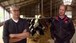 Bart Stokkermans en Frans Kennes willen gewoon blijven boeren in Oisterwijk. (Foto: Jan Waalen)