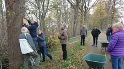 Bewoners hangen de mezenkastjes op (foto: gemeente Roosendaal).