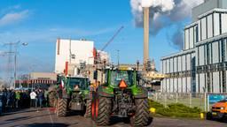 Grote hoeveelheid boeren bij de Amercentrale in Geertruidenberg. (foto: Marcel van Dorst)