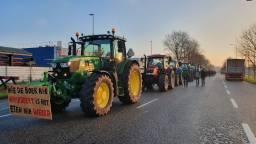 Boeren op het industrieterrein van Moerdijk. (Foto: Collin Beijk)