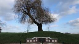 Monument Kapelsche Veer en 'de boom die alles zag' (foto: Willem-Jan Joachems)