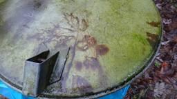Afdruk eikenblad op deksel vuilnisbak Foto Loes Westgeest