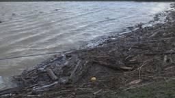 Noordwaard stroomt leeg, wat achterblijft zijn kadavers en heel veel afval.