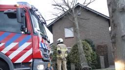 In Zeeland waaide een boom zondag tegen een woning aan. Foto: AS Media