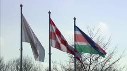 Vlaggen in Beek en Donk.