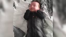 Baby Rico nu het een stuk beter met hem gaat (foto: Lesley Verschueren)