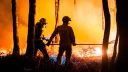 Brandweerlieden aan het werk in de Peel.