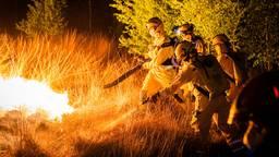 Brandweerlieden aan het werk in de Deurnese Peel.