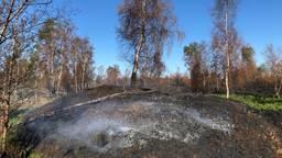 Weken na de brand rookt en smeult het nog steeds op de Peel (Foto: Alice van der Plas)