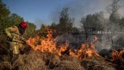 Foto uit het boek over de grootste natuurbrand in Nederland. (Foto: Defensie)