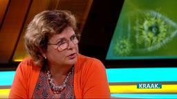 Annemieke de Groot in KRAAK.