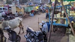 De jonge vrouw is op reis in India (foto: Pexels).