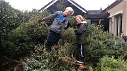 Naut (links) en Dex op hun enorme stapel bomen (foto: Karin Dubbelman-van Onzenoort).