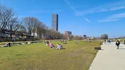 Het Spoorpark in Tilburg (foto: Noël van Hooft).