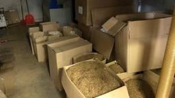 In de loods lagen ook dozen vol tabak (foto: FIOD).