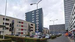 De Boksdoornerf (foto: Google Images).
