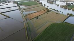 Boeren hebben miljoenen euro's schade door overstromingen