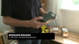 Bernard Brands uit Neerlangel verkoopt elektrische muizen- en rattenvallen
