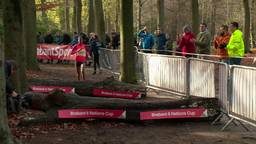 Wedstrijdverslag van de Warandeloop 2015: Sifan Hassan oppermachtig bij de vrouwen, Richard Ringer wint bij de mannen