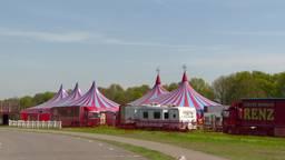 Circus-inboedel onder de hamer