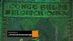 Jan Fabre verwerkt honderdduizenden keverschildjes in kunstwerken over de Belgische Congo