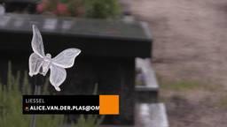 Jonge vandalen (7 en 8) vernielen begraafplaats in Liessel