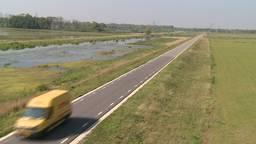 Biesboschbevers doodgereden op nieuwe polderwegen in de Noordwaard