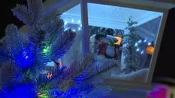 Ze bestaan echt, Brabanders die nu al kerstinkopen doen!