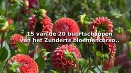 [VIDEO] Buurtschappen bloemencorso Zundert weten al wat ze gaan bouwen voor het corso 2017