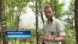 Bosbranden Deurnese Peel mogelijk aangestoken, zegt de brandweer