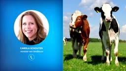 Minister Carola Schouten van Landbouw over de aanpak van mestfraude.